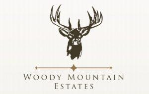 woody mountain logo